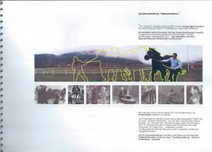 Drive_In: Kino Landesausstellung Kärnten 2001 (Projektvorschlag)